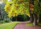 18-schlossgarten-bei-den-tulpenbaeumen