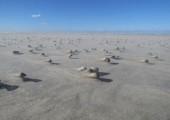 Muscheln im Sand Foto: Gerke Ennen